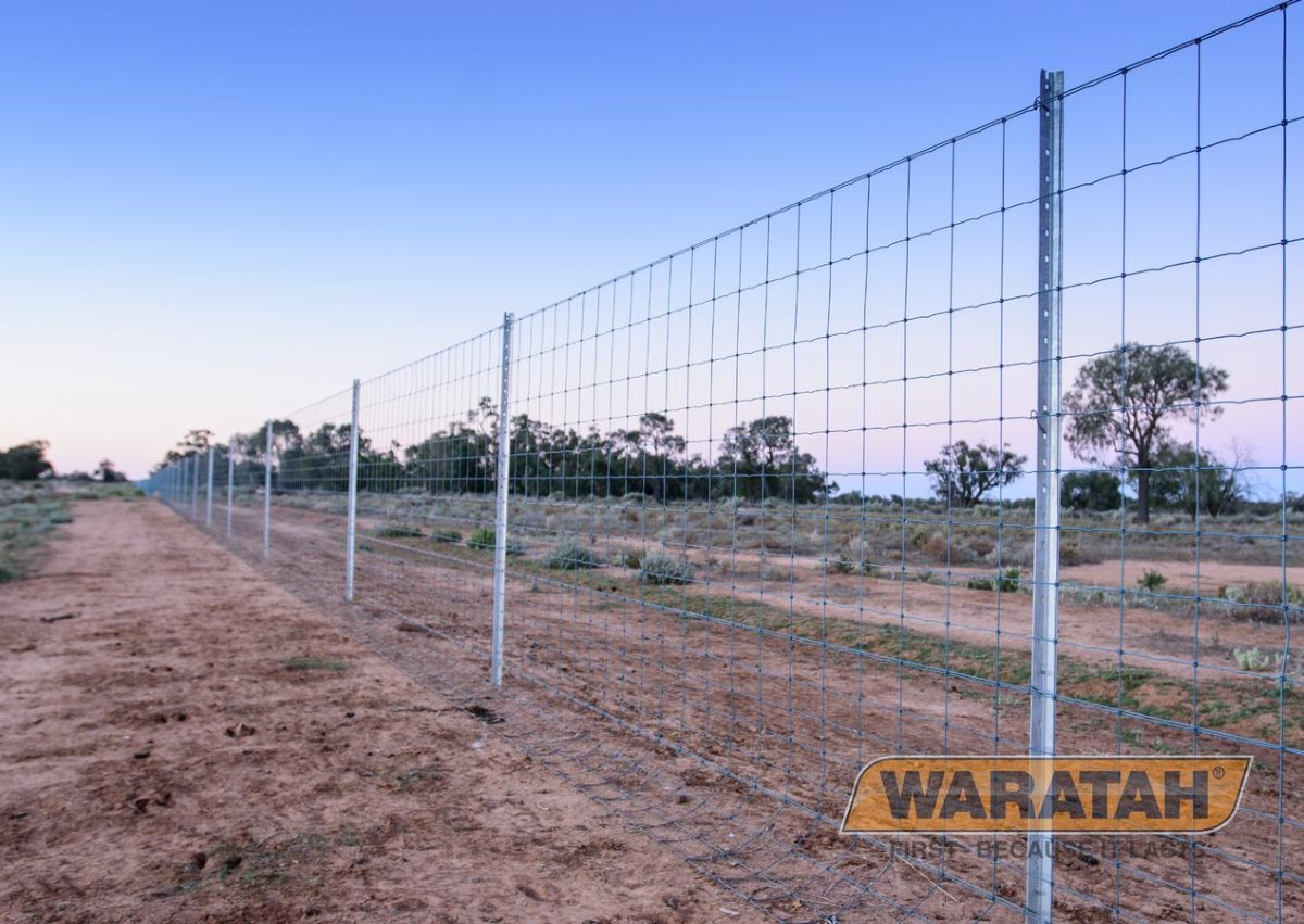 Stocksafe-T Longlife Blue | Waratah Prefabricated fencing